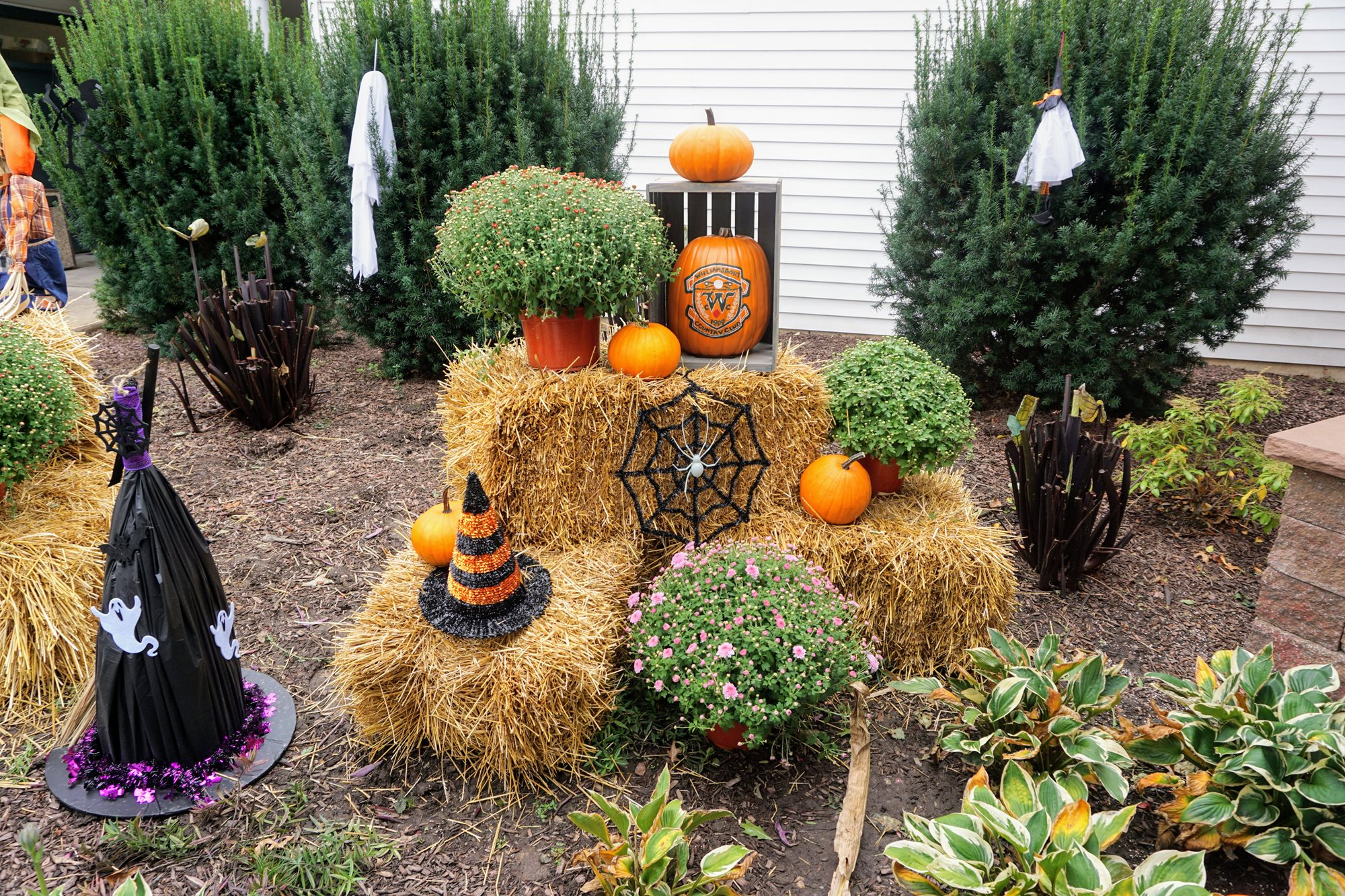 3_Pumpkins_and_Pony_Rides_10_14_18_022